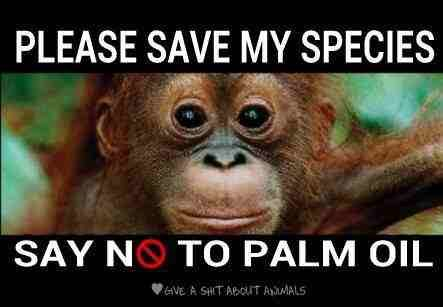 Palmový olej NE